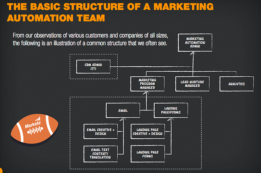basic structure of a marketing automation team