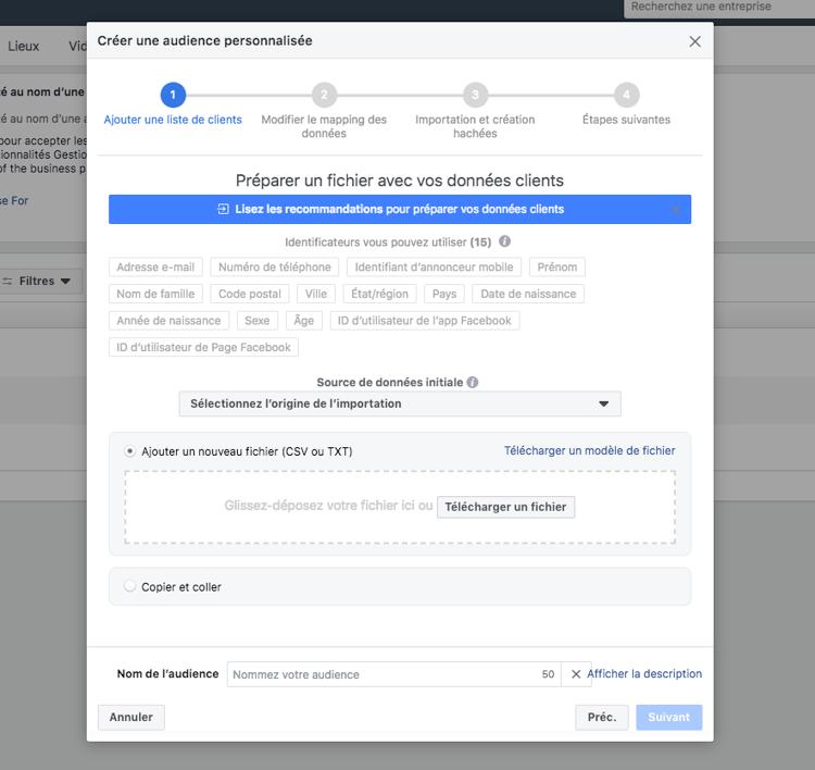 facebook-comment-parametrer-compte-publicitaire-Import-Fichier-Audience