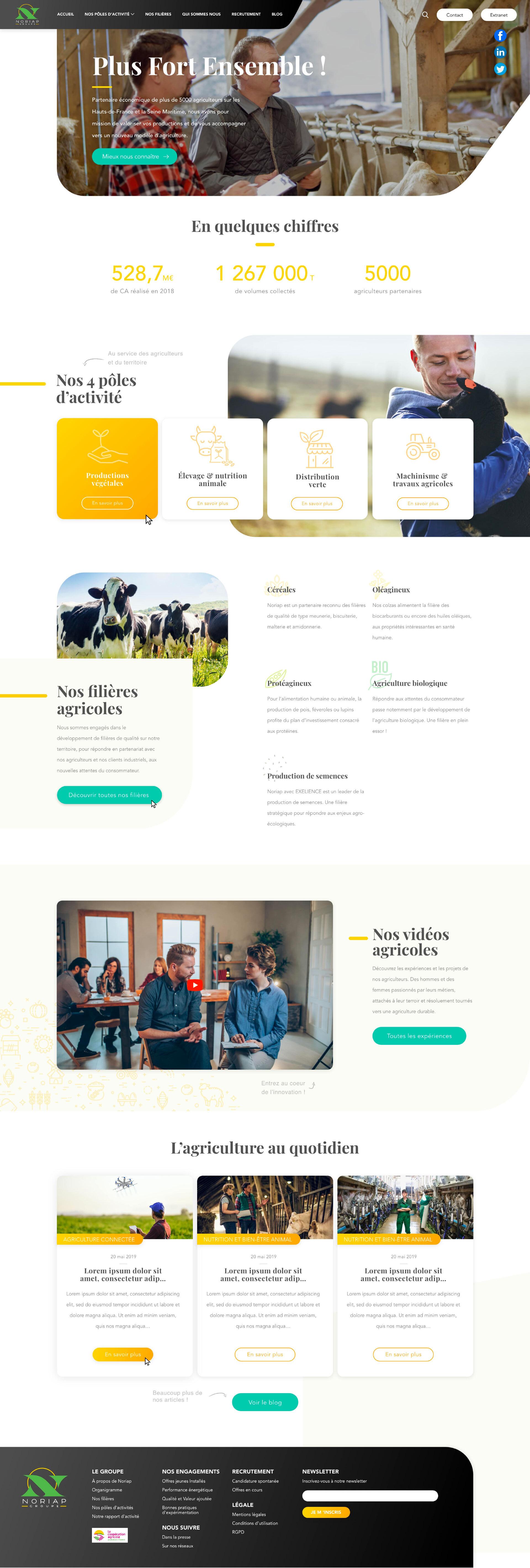 Markentive-Webdesign-Noriap